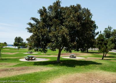 VIK14_0730_Parks_0018